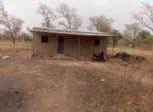 local soumbala